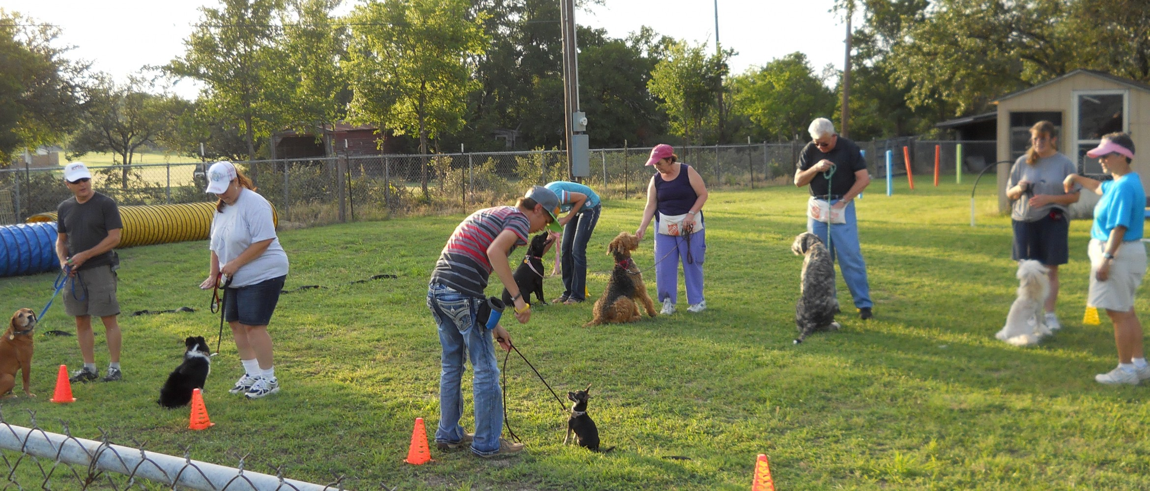 Cowtown Dog Sports - Dog Training Classes in Agility