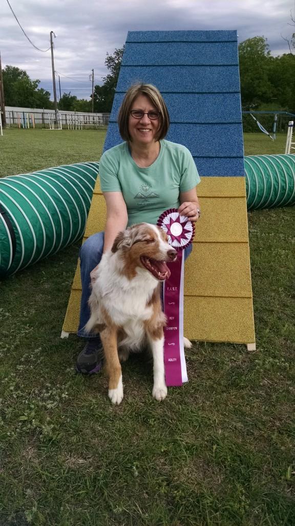 Fort Worth Dog Training Classes